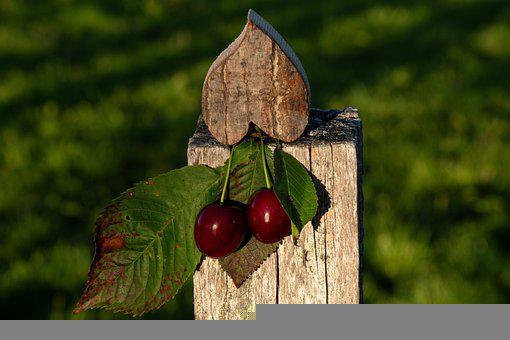 Cherries, Still Life, Fruit, Red, Vitamins, Food