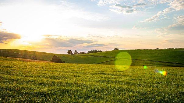 Sunrise, Field, Sunset, Landscape