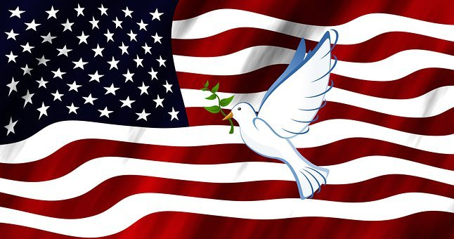 Peace, Flag, Dove, Usa, America, National, Banner