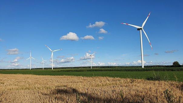 Wind Turbine, Cornfield, Mecklenburg, Wind Energy