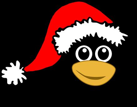 Penguin, Tux, Bird, Happy, Animal