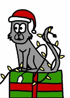 Christmas, Holiday, Cat, Kitten, Kitty, Feline, Gift
