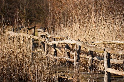 Bridge, Water, Grass, Wood