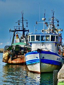 Boats, Fishing, Port, Fisherman, Water