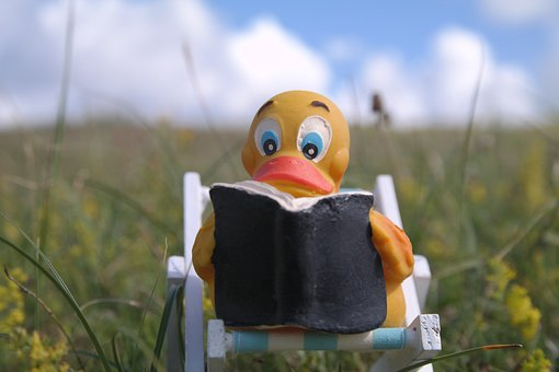 Read, Quietscheente, Duck, Deck Chair, Book, Meadow