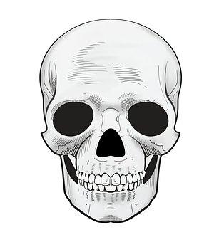 Scary, Skull, Death, Dead, Human, Halloween