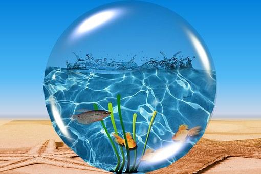 Ball, Glass, Water, Sky, Reflection, Fish, Beach