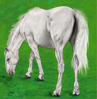 Digital Artwork, Painting, Horse, Drawing, Art, Grazing