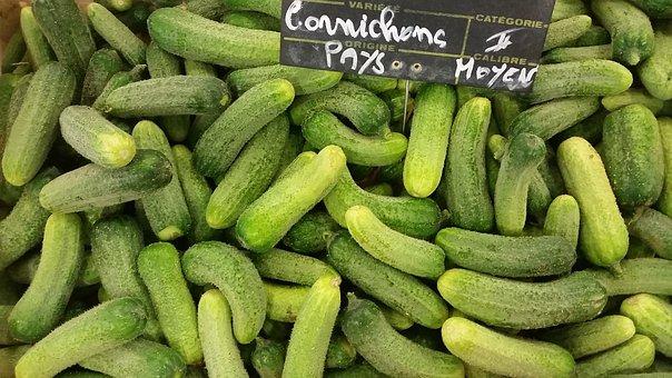 Vegetable, Green, Pickles, Bio, Salad, Freshness
