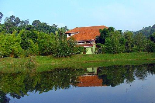 Holiday Home, Resort, Greenery, Pond, Reflection