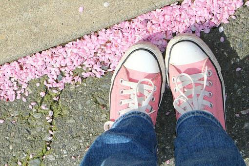 Spring, Pink, Chucks, Pink Flowers, Blossoms, Shoes