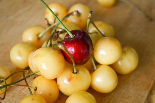 Cherry, Leadership, Other, Unlike, Berry, Society