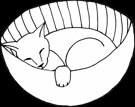 Cat, Feline, Sleeping, Basket, Pet, Animal, Cute