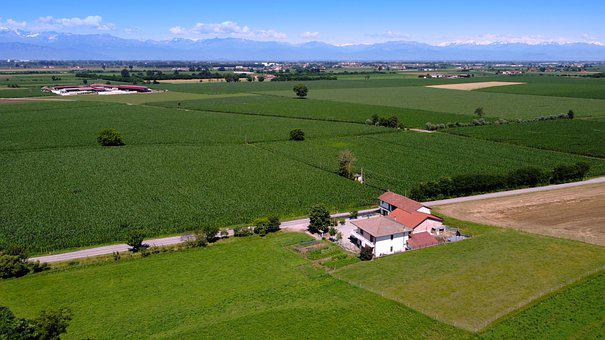 Aerial Photography, Italy, Nature, Summer, Field