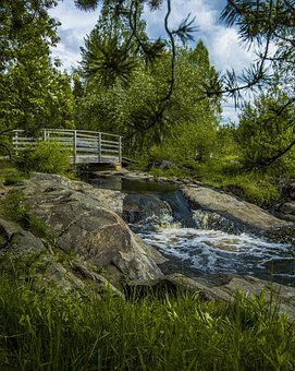 Nature, Forest, Landscape, Path, River, Water, Trail