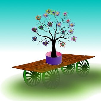 Holiday, Flowers, Cart, Home Delivery