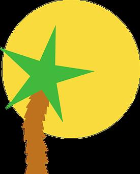 Sun, Star, Palm, Summer, Vector, Logo