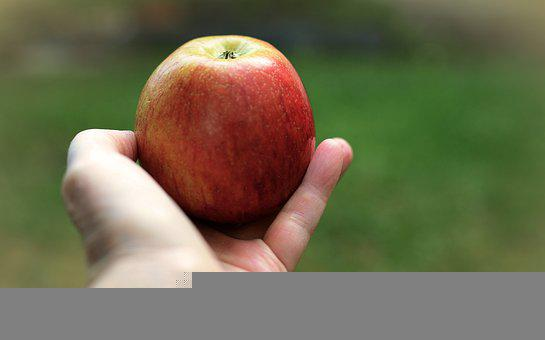 Apple, Fruit, Hand, Healthy, Vitamins, Ripe, Eat