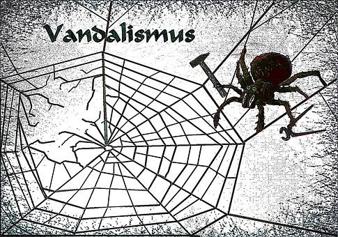 Spider, Web, Repair, Tool, Vandalism, Cobweb, Insect