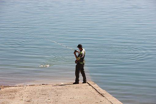 Fishing, Fisherman, Hobby, Fish, Water, Reel, Outdoor