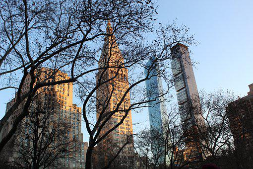 Central Park, Buildings, Manhattan, City, America