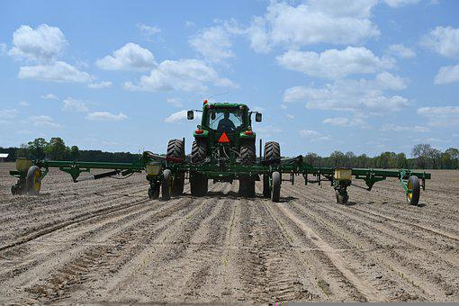 Farm, Farming, Agriculture, Planter, Male Row Planter