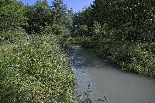 Creek, Field, Landscape, Nature, River, Beautiful