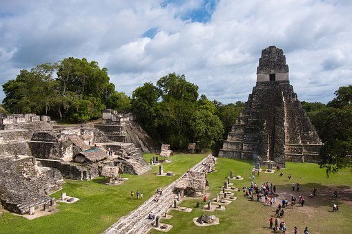 Pyramid, Maya, Temple, The Ruins Of The, Rainforest