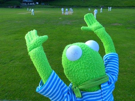 Kermit, Cheer, Fan, Look Forward, Frog, Cricket