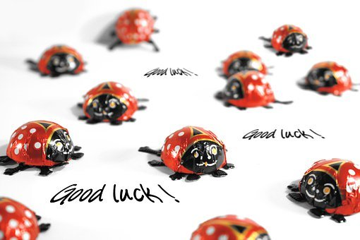 Ladybug, Luck, Greeting Card, Greeting, Joy, Frohsinn