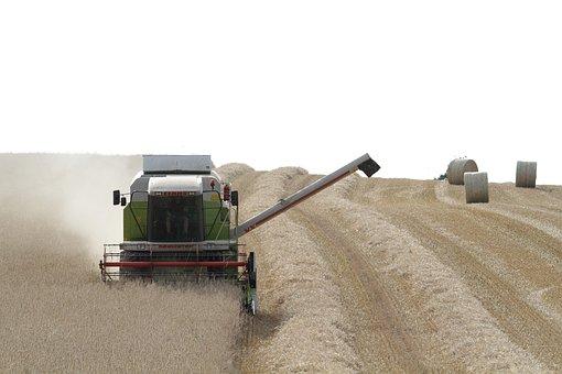 Landscape, Drescher, Cereals, Nature, Agriculture