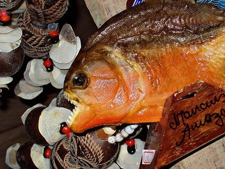 Piranha, Dangerous, Fish, Souvenir, Native, Brazil