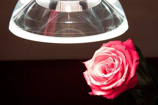 Lumina Galileo, Pendant Lamp, Thickness, Crystal Glass