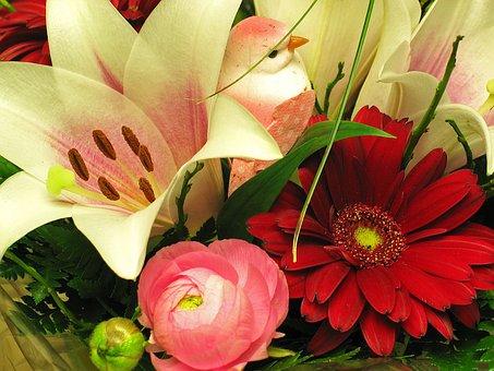 Bouquet, Ranunculus, Gerbera, Lily, Spring, Flower Vase