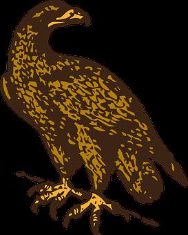 Eagle, Golden, Bird, Fly, Perched, Wildlife, Predator