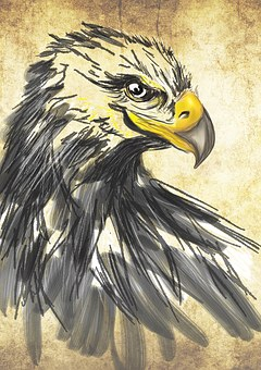 Drawing, Art, Eagle, Animals