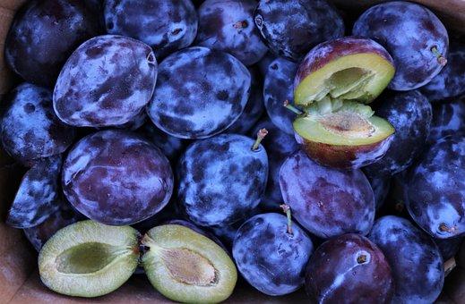 Fruit, Plum, Purple Fruit, Food, Juicy, Tasty, Health