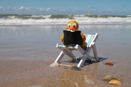 Read, Duck, Chair, Book, Water, Beach, Wave, Seashell