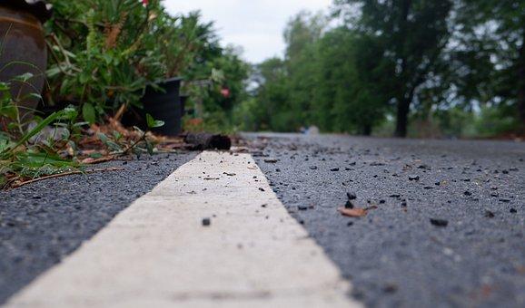 Road, Trees, Ground, Floor