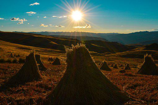 Harvest, Sunset, Field, Oats, Sun, Meadow, Haystack