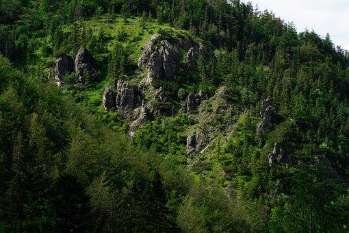 Mountains, Terrain, Sky, Nature, Carpathian