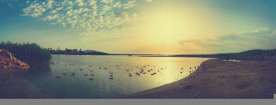 Laguna, Sea, Ducks, Sky, Clouds