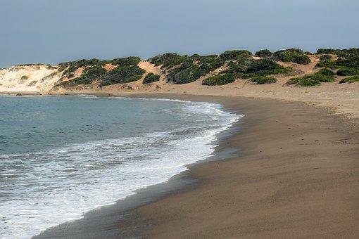 Beach, Deserted, Cyprus, Akamas, Lara Bay, Nature, Wild
