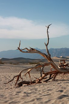 Death, Valley, Sand, Nature, Landscape, Desert, Dry
