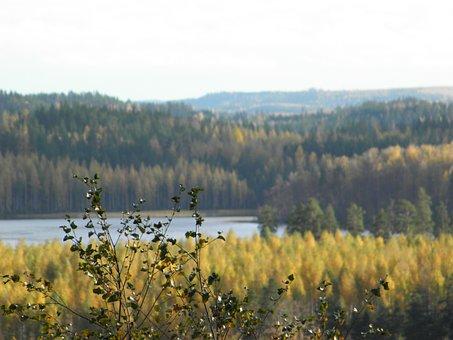 Autumn, Archipelago, Saimaa, Finnish, Savonlinna
