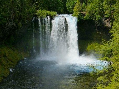 Koosah Falls, Waterfall, Cascade, Koosah, Falls, Water