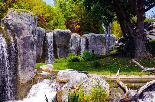 San Diego, Zoo, Gorilla, Enclosure, Usa, California