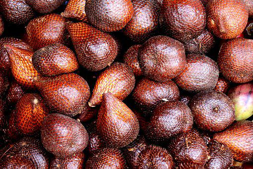Salak, Snake Fruit, Snakeskin Fruit, Salacca Zalacca