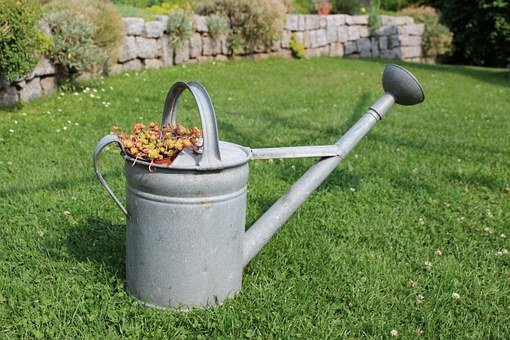 Watering Can, Garden, Rush, Wall, Stones, Flowers