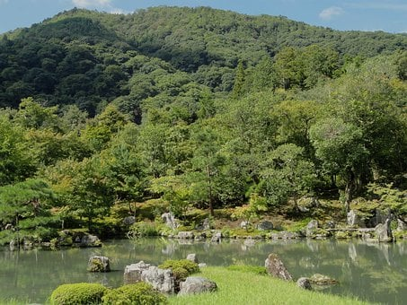 Kyoto, Japan, Landscape, Forest, Trees, Woods, Scenic
